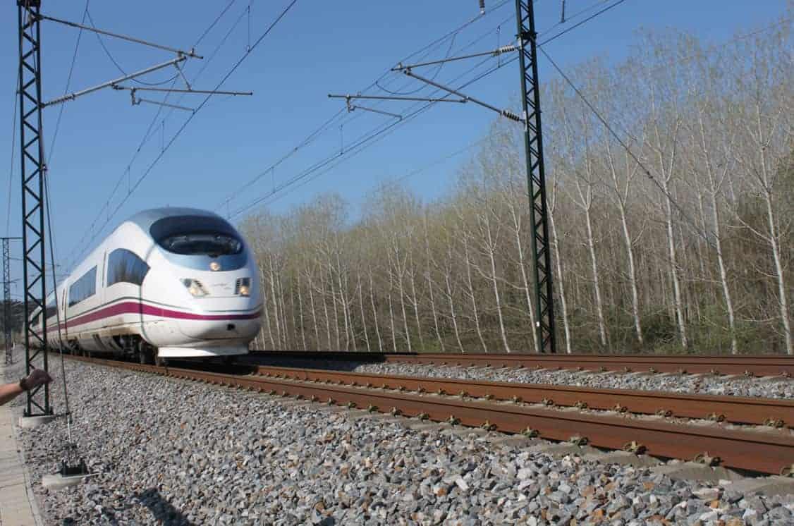 Serveis de consultoria i assistència tècnica per al seguiment de l'estat i eficiència de les mesures preventives i correctores per a la fauna a la línia d'alta velocitat Barcelona-Frontera francesa